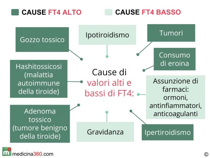 Cause di valori alti o bassi della tiroxina libera