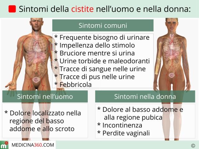 infezione alla vescica femminile sintomi