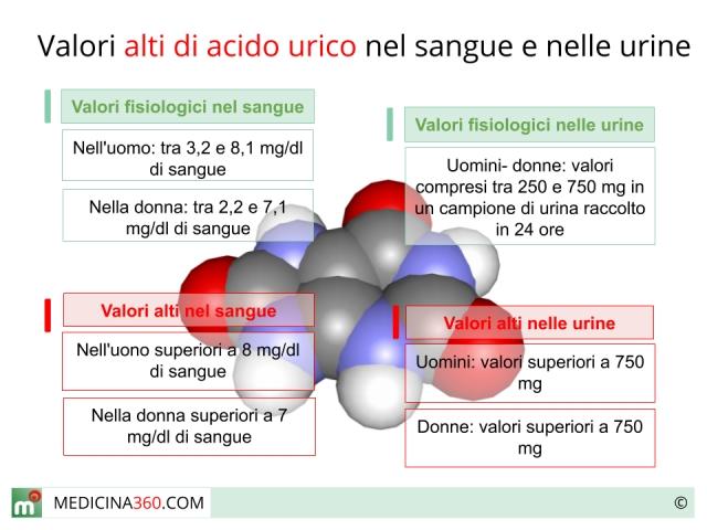 acido urico alto y colesterol bajo el tomate de arbol sirve para bajar el acido urico remedios caseros para quitar el dolor por acido urico