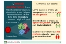 Anemia mediterranea: sintomi, diagnosi, cura e conseguenze della talassemia