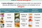 Asma allergica: sintomi, cause, cura e rimedi naturali
