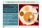 Basofili: alti, bassi, assenti e valori normali nel sangue