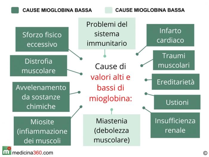 Cause di valori alti e bassi di mioglobina
