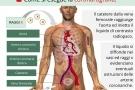 Coronarografia: come si esegue, i rischi e la degenza post esame