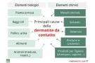 Dermatite da contatto: cure e rimedi naturali, sintomi e cause