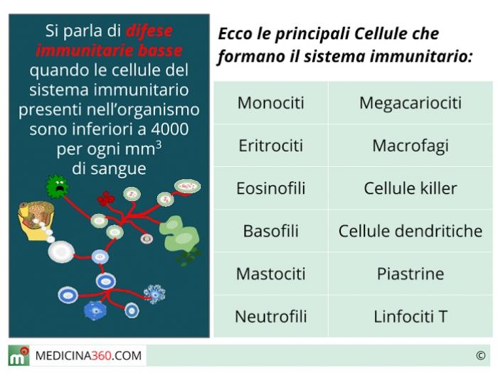 dieta per pazienti immunodepressi