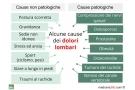Dolore lombare: sintomi, cause, rimedi ed esercizi