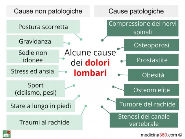 Sindrome s4 s5 s6 reparto cervicale di una spina dorsale