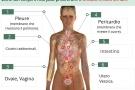 Endometriosi: cos'è? Sintomi, diagnosi cura ed alimentazione