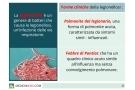 Legionella: sintomi, incubazione, trasmissione e terapia per la legionellosi
