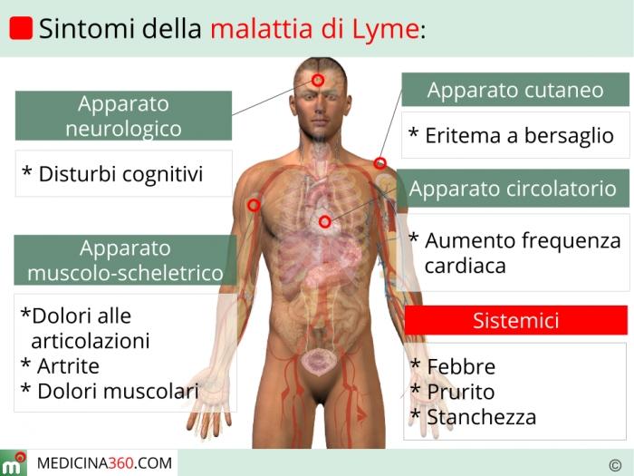 La dermatite di atopic può essere da vermi