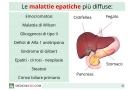 Malattie epatiche: quali sono? Sintomi, e cure delle malattie del fegato