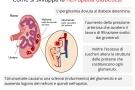 Nefropatia diabetica: stadi, cause, sintomi, diagnosi e terapia