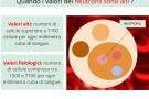 Neutrofili alti o neutrofilia