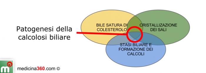 Patogenesi della calcolosi biliare