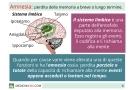 Perdita di memoria in giovani ed anziani: primi sintomi, cause e rimedi