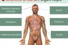 Sindrome di Marfan: sintomi, diagnosi, complicanze  ed aspettative di vita
