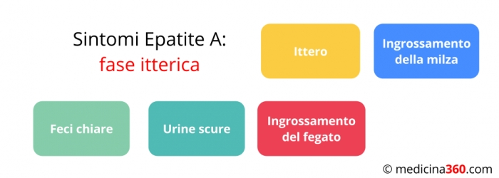 Epatite a sintomi contagio cura e vaccino per debellare - Epatite c periodo finestra ...