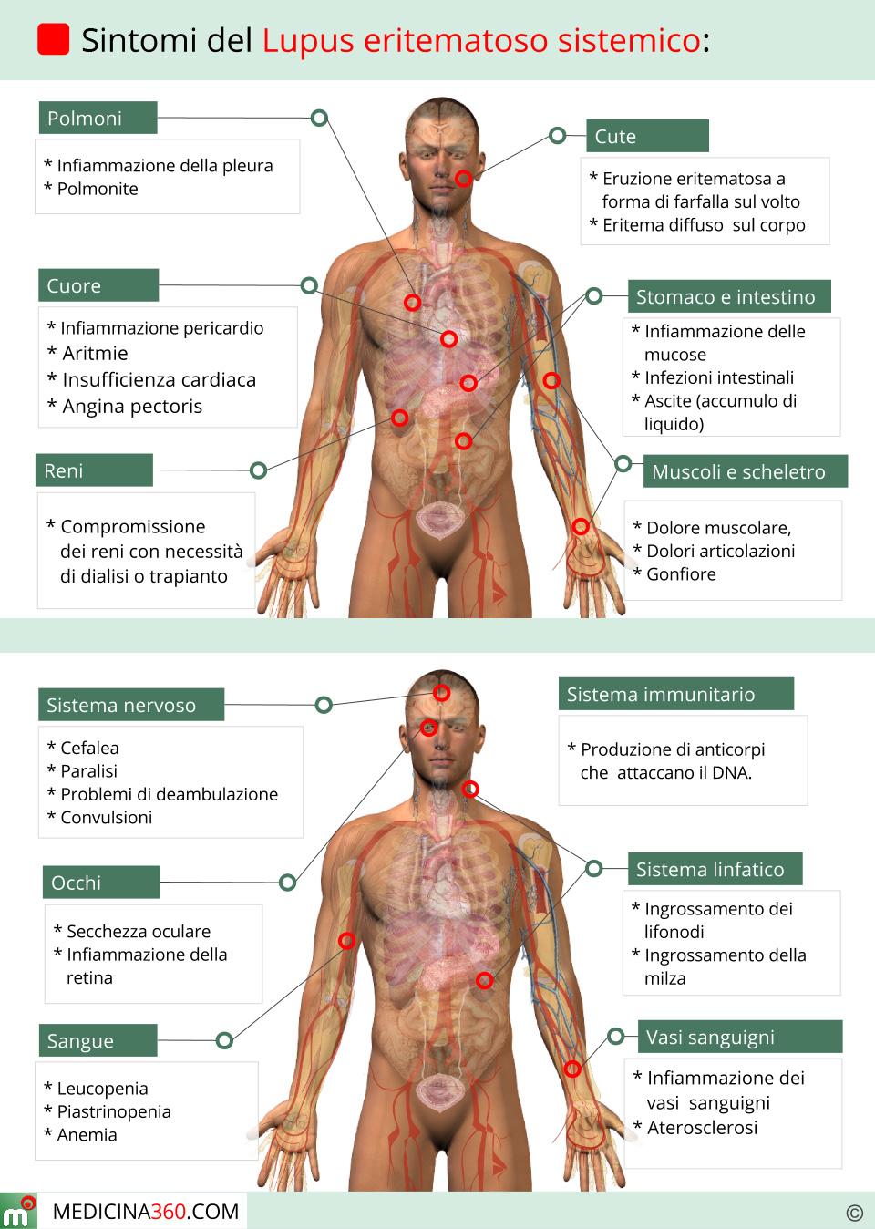 Il collo e la vertebra dietro danni