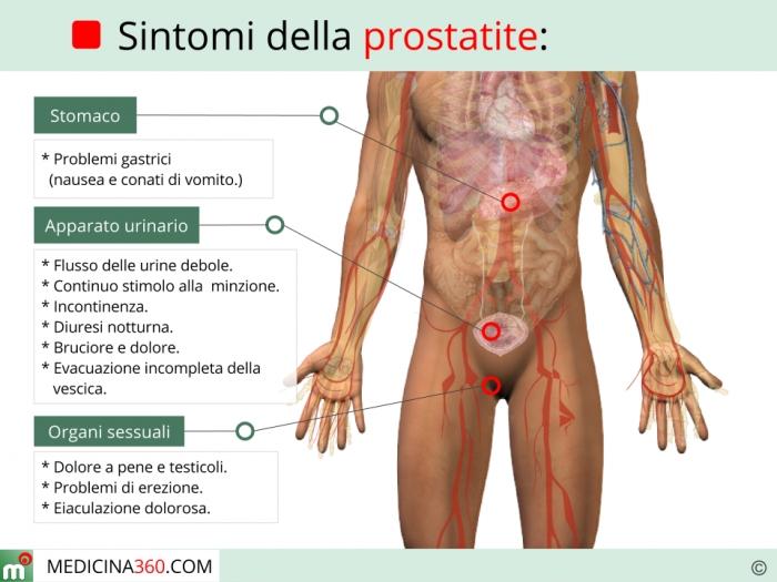 prostata erezione problemi