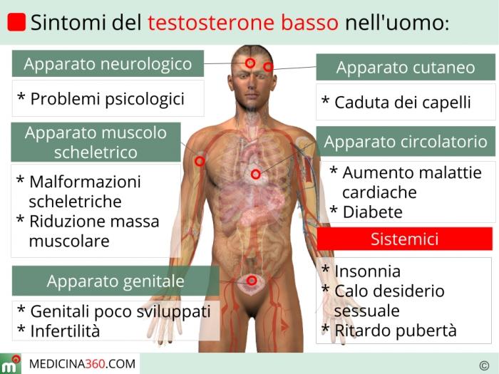 erezione basso livello di testosterone