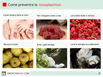 Toxoplasmosi nei gatti