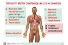 Tracheite: sintomi della forma acuta e cronica