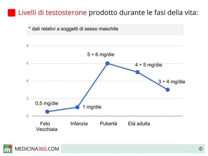Valori di testosterone nelle-fasi della vita