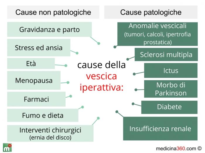 Vescica iperattiva: sintomi, cause, cure e rimedi naturali